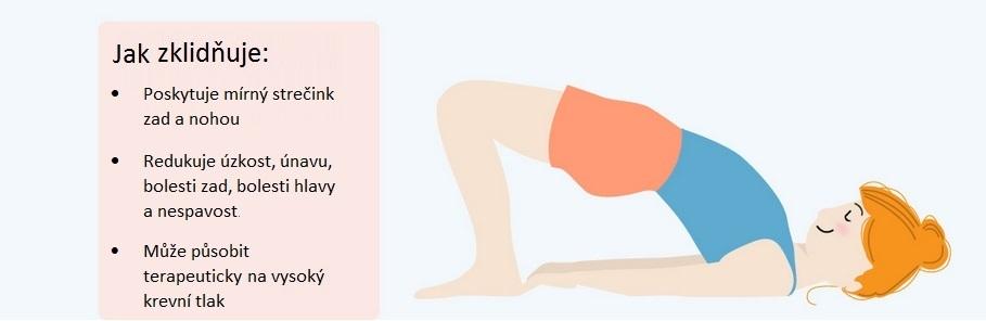 13 jednoduchých jógových pozic, které vám pomohou vyplavit stresové hormony z těla